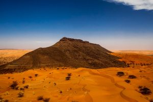 africa race desert